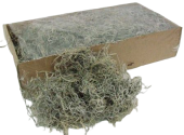 Tillandsia Moss (Forest Moss) Bag Natural White x 200g