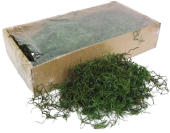 Tillandsia Moss (Forest Moss) X 200g Moss Green Bag