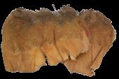 CoCo Matting Hair (Palm Bakla) 1/2kg