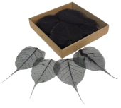 Skeleton Leaves Bleeched Black X 200