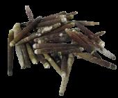 Shell Urchin Spines 500gr