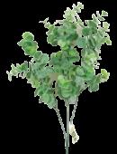 Eucalyptus W/Powder 65cm Grey