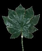 Fatsia Leaf 55cm