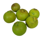 Bohla The Hatal Apple Green x 25 Pcs