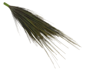 Grass Bush Green 60cm