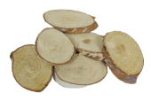 Birch Woodslices Oval