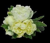 Peony Bundle Cream-Green 25cm