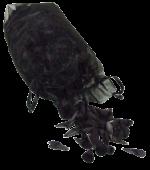 Mini Woodhorn Black Decopackaging