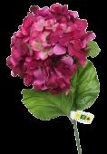 Hydrangea Spray Beauty 65cm