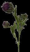 Thistle (Cynara) x 3 Heads Lavender 81cm