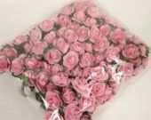 New Tea Rose Pic x 12 Stems x 6 Bunches 2 Tone Pink