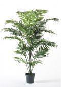 Paradise Palm x 22 Leaves 175cm