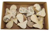 Thick Bark Mushrooms 6.5cm x 12pcs Natural