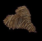 Heart Knotty Vine Natural 15cm