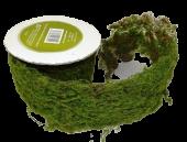 6 x 90cm Decorative Moss Roll Green