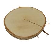 Wood Slice Birch Medium App 4cm Thick (App 25-30cm)
