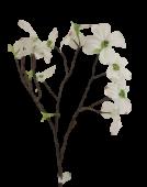 Dogwood Branch 70cm White