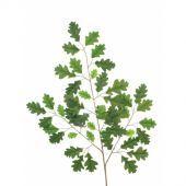 Oak Spray W/47 Leaves