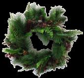 Pine Fern Wreath 45cm