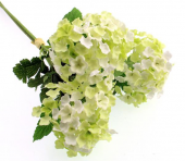 29cm Snowball Bundle x 3 Cream/Green