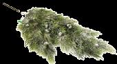 Cedar Spray W/Berries & Snow 67cm