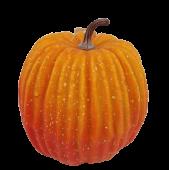 Pumpkin Orange D - 12cm
