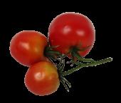 Tomato Bundle 3pcs Red