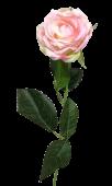 Diamond Rose Light Pink 40cm
