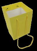 Olympic Bag Yellow 25cm x 10