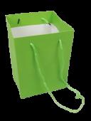 Olympic Bag Lime 25cm x 10