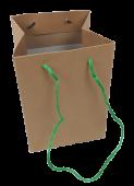 Olympic Bag Kraft With Green Handles 25cm x 10