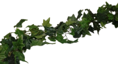 183X15Cm Green Ivy Leaf Chain Link Garland