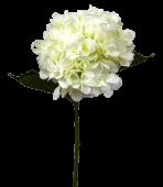 Hydrangea 65cm White