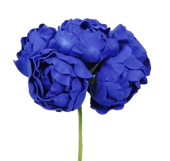 Small Peony x 6 Heads ColourFast Royal Blue
