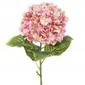Hydrangea Large 101cm (App 25cm Head) Pink