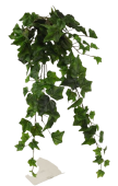 Ivy Hanging Bush 70cm Green
