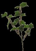 Ivy Spray x3 55cm Green 24 Lvs