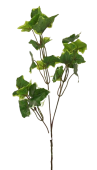 Ivy Spray x3 55cm Green/White 24 Lvs