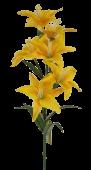 68cm Lily Spray Yellow