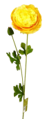 63cm Ranunculus Spray Yellow