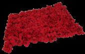 40 x 60cm Red Hydrangea Flower Wall