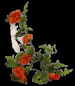 Poppy Garland 180cm Orange