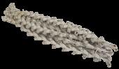 Bundle Buriti Twig 40cm Misty White x 7 Stems