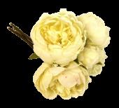 28cm Cream Peony Posy