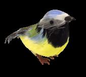 Feathered Blue Tit Natural (13cm) x 6pcs