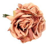 27cm Open Rose x 5 Heads Posy Bisque