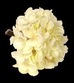 28cm Hydrangea Posy Cream