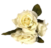 24cm Open Rose Posy x 3 Heads Cream
