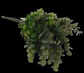 Eucalyptus Bush Green/Grey App 35cm