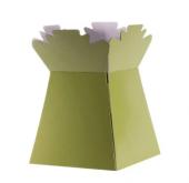 Sage Green Living Vase (Aqua Box) x 30